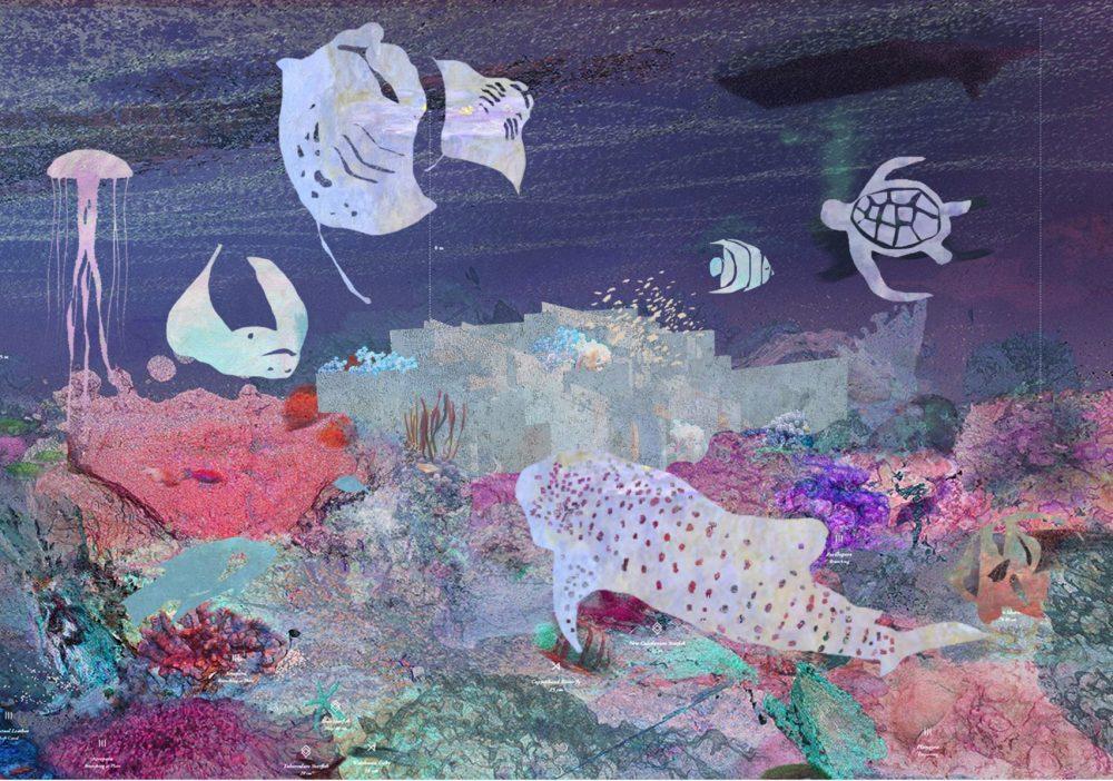 tempodacqua mazatlan-aquarium3